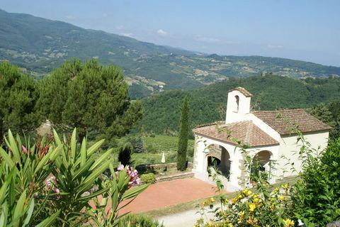 Questo complesso, il quale produce vino e olio d'oliva, è la base perfetta per esplorare la regione Toscana. Sulla cima della collina c'è un gruppo di 7 bellissime, restaurate case vacanze e appartamenti con una vista magnifica, un lago naturale e la...