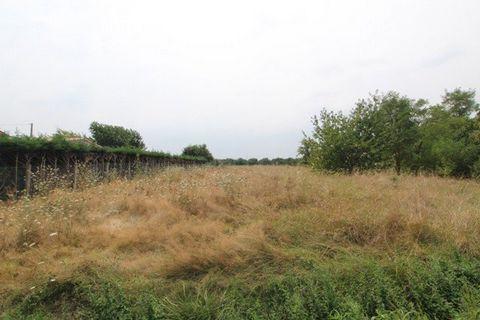 Ref 10754: Au sud de Montauban terrain à bâtir d'une surface de 1500m2, plat. ,Prévoir un assainissement autonome. ,Contacter Patrick au : ... ,Agence Montauban: ...