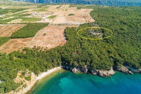 Local coastal villa that is completely isolated on a 20,000 m² property. It is one of the few villas that extends to the sea. 150 meters from the property is the beautiful bay with crystal clear sea and white pebbles. The natural setting with 200 oli...