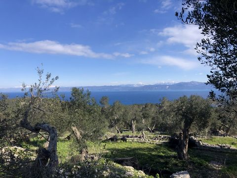 A unique plot of land of 3,168 sqm located in the center of wonderful Paxos island. The land is slightly slop with panoramic views, just 1.000 meters from all amenities, near the roadside, and is suitable for immediate usage for creating a dream home...