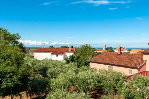 Villa Baraka is a newly built house with a private pool (27 sqm) located in Central Istria - Kanfanar.. The house can accommodate up to 8 persons. The ground floor features a spacious living room connected with dining room and a kitchen which is equi...