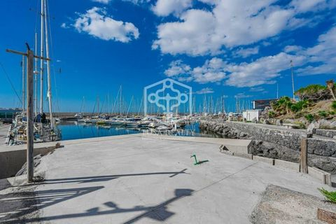 Sale of tourism company and nautical activities with a concession in a marina, with high profitability, with all the corresponding permits and licenses. The company is sold for retirement. In an area of 1500 meters just 10 meters from the sea, the ...