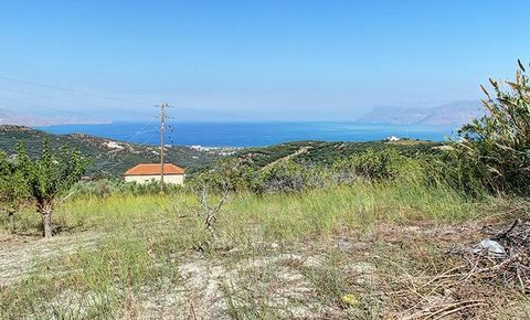 Crete, Kasteli, Marediana. For saqle a land of 2,012 sq.m., buildable, it can receive electricity, water, telephone, because it is within the settlement. The property also has the ability to be cut into three plots of land of which two of which will ...