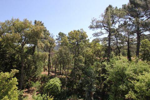 Cette villa avec un mobilier design individuelle située sur un beau domaine fermé composé de maisons individuelles situées dans le massif de l'Esterel. Un véritable havre de tranquillité et de soleil. Les maisons de cette région montagneuse sont priv...