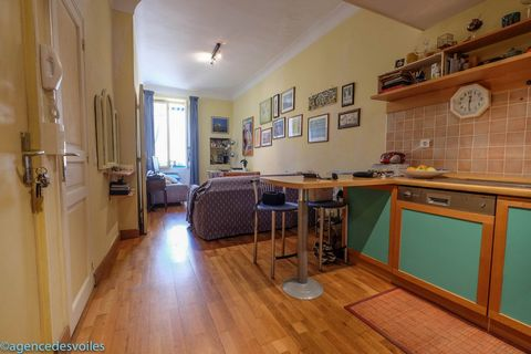 Deux pièces en plein centre ville avec un grand salon et cuisine américaine, une chambre une salle d'eau et spacieuse mezzanine. L'appartement se situ