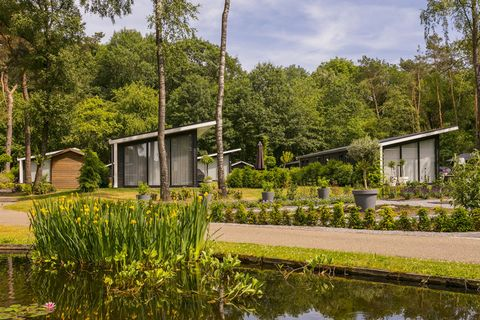 This beautiful holiday park offers a variety of luxurious accommodations. The Bos Lodges are in a wonderfully quiet location at the edge of the forest and are available in 4-per. (NL-7475-16), 5-pers. (NL-7475-17) and 6-pers. (NL-7475-18) variants. T...