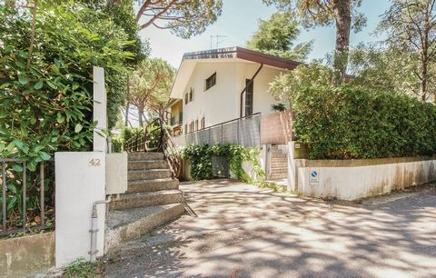 Wonderful vacation house on three levels, in tourist seaside resort Lignano Sabbiadoro, only 300 m from the sea. It is surrounded by pinewood and is located in the part of Lignano, called