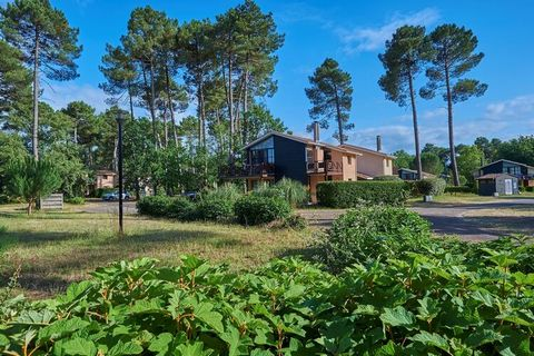 In the 54 ha. castle park there are about 100 luxury holiday homes. The houses and villas have a spacious garden, which, in addition to your peace and quiet, also guarantees your privacy, even in high season. In the garden, you will also find an outd...