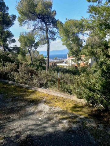 The land is 1,050 sq.m It has a maximum possibility of construction for main use and is located in the village of LOKRIDA, in the region of FTHIOTIDAS. It features a panoramic sea view and is accessible very easily. It is only 10 minutes from the vil...