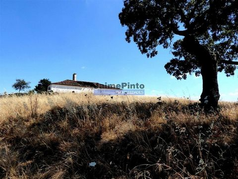 103 0000 sq. m. of land for cattle and cereals. Portugal, Castro Verde, Beja. Property of 103 ha, with pasture, holm oak, flat areas, wavy areas, some olive grove, 5 ruins to recover, 3 water wells and electricity. For sale in the region of Castro Ve...
